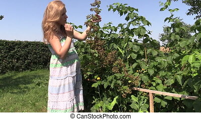 girl blackberry bush - young blond pregnant woman eat...