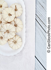 Mini White Pumpkins - Beautiful table decorations of white...