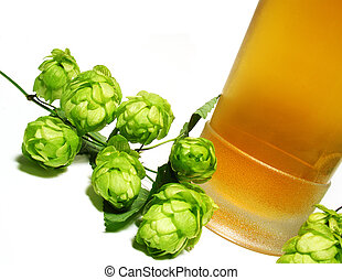 Beer and hop-plant - Detail hop-plant and beer in glass