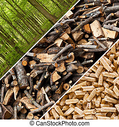 Wood pellets - Steps of industrial production for wooden...