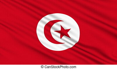 Tunisia flag, with real structure of a fabric