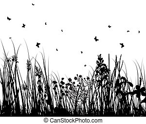 summer meadow - Vector grass silhouettes background for...