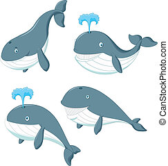 Cartoon whale - vector illustration of Cartoon whale