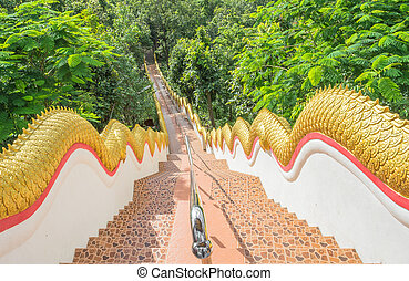 long stairs way - image of long stairs way to forest...
