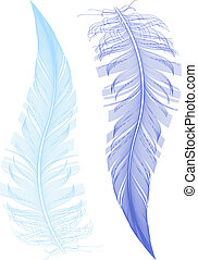 feather drawing, vector
