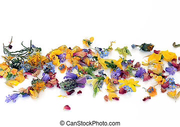 Scattered Flowers and Herbs - Fresh and dried flowers and...