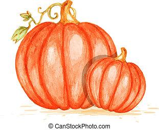 Watercolor orange pumpkins - Watercolor vector orange...