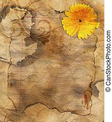 Retro Floral Grunge Paper - Grunge Burst Paper Flourish...