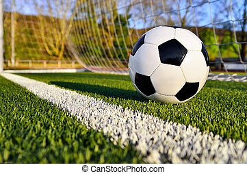 Soccer ball behind the goal line - Football lying on the...