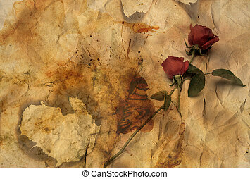 Rose on Burnt Paper - Romantic Valentine Love Rose Isolated...