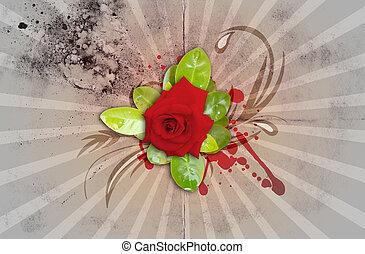 Rose Isolated on Grunge Sunburst - Red Rose Isolated on...