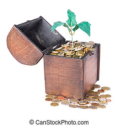 Wooden money chest filled with coins and a money tree,...