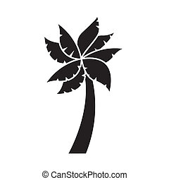 tree palm illustration