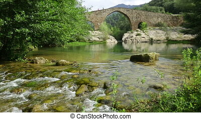 Mountain river with stone bridge in Pyrenees. Llobregat,...