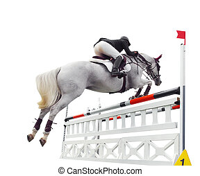 Up and Over - Show Jumper over Bars Isolated with path...