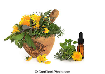 Herb and Wild Flower Therapy - Wild dandelion and gorse...