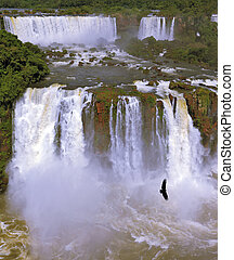 Waterfalls and birds Black Andean condors fly over the foamy...