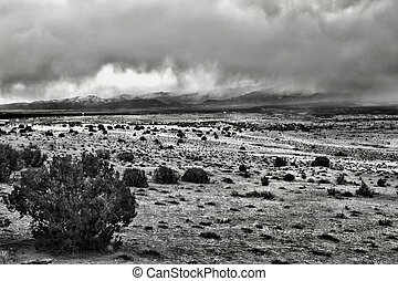 Stormy Winter Landscape - Black and white winter landscape...