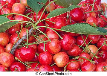 cherry 15