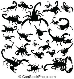 Black scorpion silhouettes on white