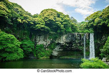 Nature waterfall - The waterfall in JeJu Island in Korea....