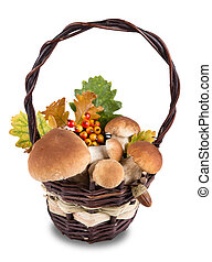 Ceps on white background, autumn harvest crop