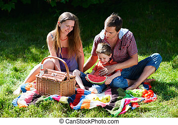 Family picnic - Young family having picnic on summer sunny...
