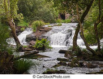 cascada, naturaleza
