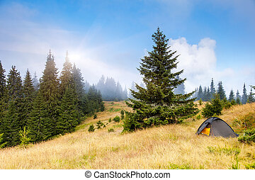 tent - Camping tent in a mountain environment Carpathian,...