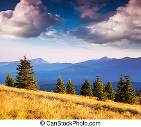mountain landscape - Beautiful view of rural alpine...