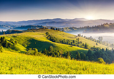 mountain - Beautiful sunny day is in mountain landscape....
