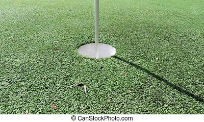 Golf ball rolling on putting green - Golf ball and flag...