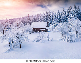 Sunny winter landscape in the mountain forest. Retro style
