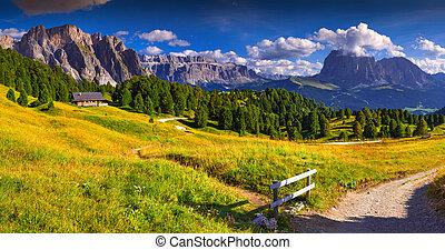 Panorama of the Pizes de Cir ridge and Sassolungo...