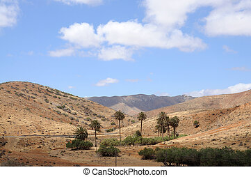 Landscape on Canary Island Fuerteventura, Spain