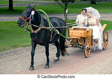 ride and groom in carriage - Romantic Bride and groom in...