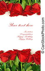 vermelho, rosas, borda