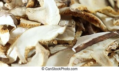 Mushrooms - Dried mushrooms as background