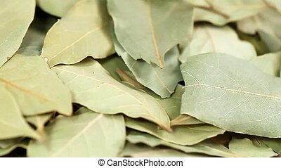 Bay Leaves - Close up from dried Bay Leaves