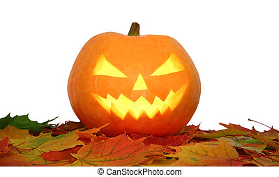 Halloween pumpkin on autumn leaves isolated
