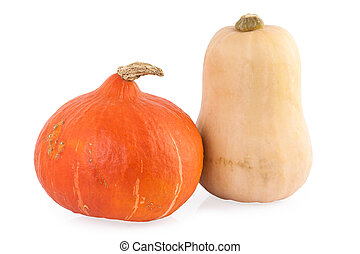 pumpkin hokkaido and butternut isolated on white - pumpkin...