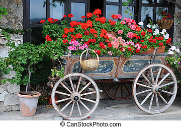 Flowers in the Cart - Garden in the cart in the city of...