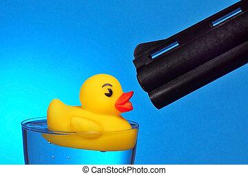 Duck Hunting - Shot that dang duck