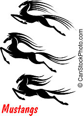 Wild horse mustangs and stallions