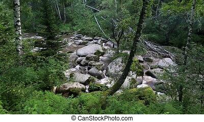 Belokurikha mountain river in Altai Krai Russia