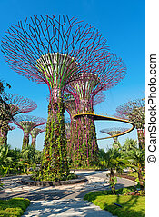 Supertrees at Gardens by the Bay park, SIngapore - Singapore...