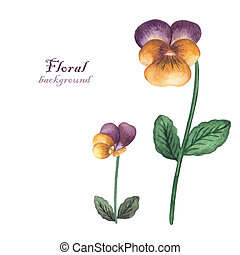 Vector watercolor flowers pansies. Invitation card with...