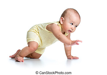 funny crawling baby isolated on white background