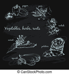Vegetables, herb and roots Hand drawn cooking set