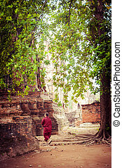 Buddhist monk at ancient ruins of Wat Mahathat Ayutthaya,...